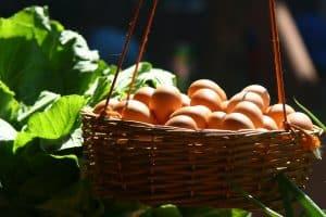 Eier in einem Korb als Sinnbild dafür, nicht alle Eier in einem Korb zu packen