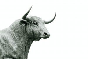 Ein Rinderbulle aus Stein
