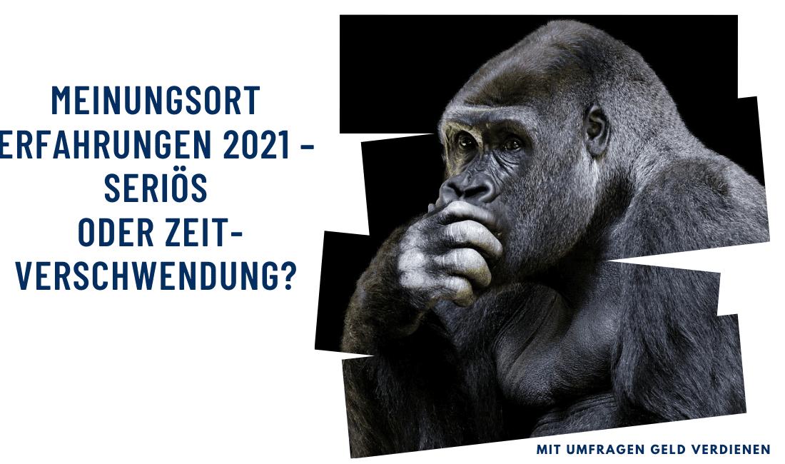 MeinungsOrt Erfahrungen 2021 – seriös oder Zeitverschwendung?
