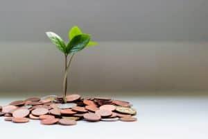 wie hoch muss Vermögen sein